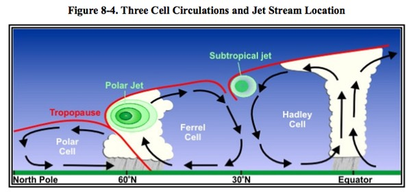 Cell Circulations